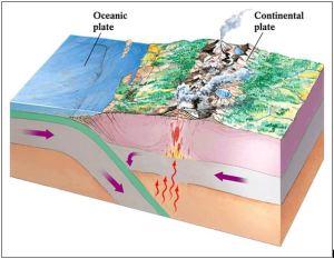 Proses Terjadinya gempa & Tsunami